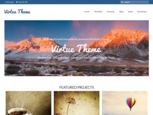 virtue free business portfolio wordpress theme