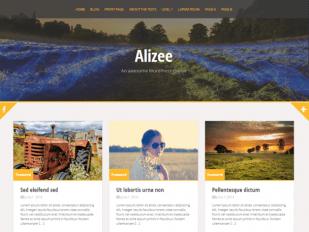 Alizee free pinterest like wordpress theme